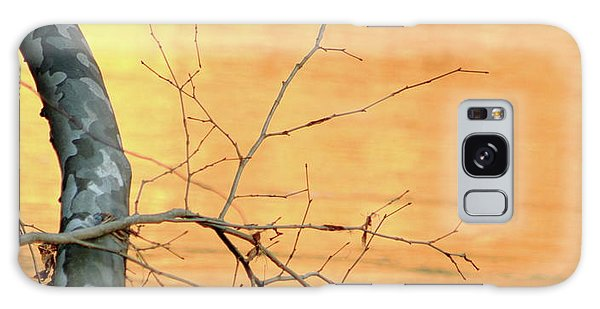 Chagrin River Gold Galaxy Case by Bruce Patrick Smith