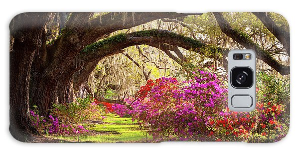 Charleston Sc Magnolia Plantation Gardens - Memory Lane Galaxy Case