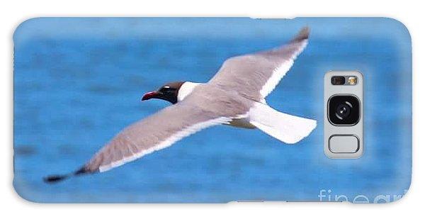 Galaxy Case - Charleston Wildlife. Seagull by Lisa Marie Towne