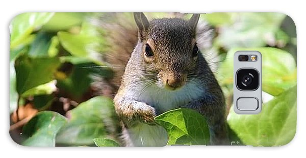 Galaxy Case - Charleston Wildlife. Squirrel by Lisa Marie Towne