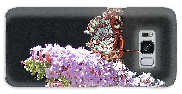 Checkerspot Butterfly Galaxy Case