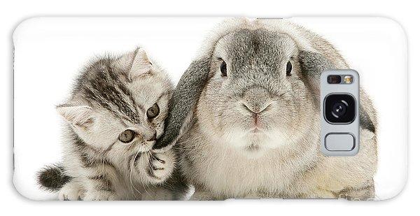 Checking For Grey Hares Galaxy Case