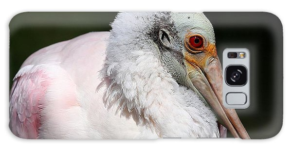 Cheese Puff Face - Roseate Spoonbill Galaxy Case