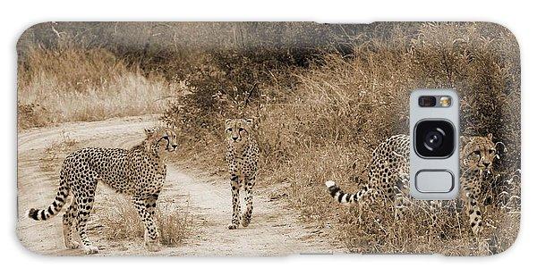 Cheetah Brothers Galaxy Case
