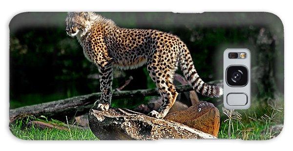 Cheetah Cub Finds Her Pride Rock Galaxy Case