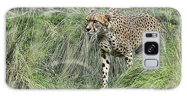 Cheetah Hunting Galaxy Case