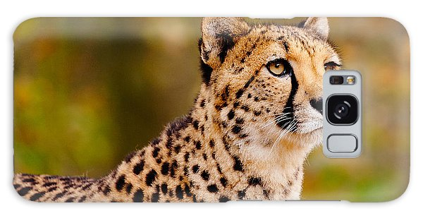 Cheetah In A Forest Galaxy Case