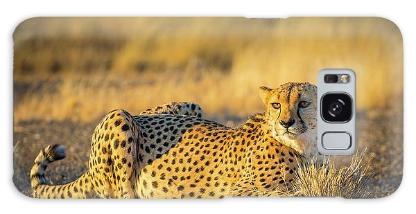 Cheetah Portrait Galaxy Case by Inge Johnsson
