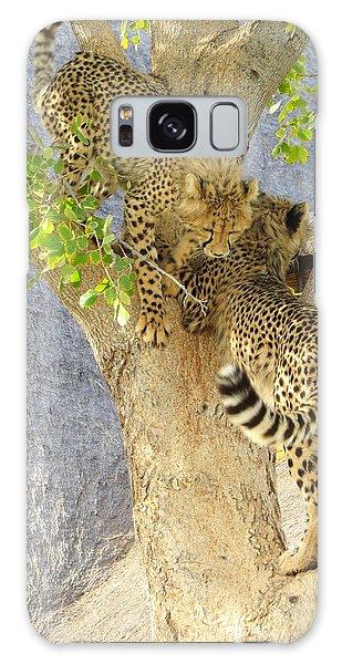 Cheetah Traffic Jam Galaxy Case