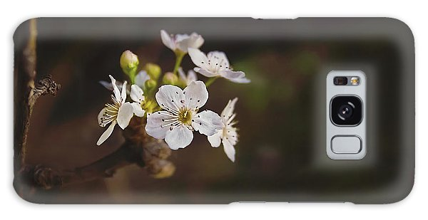 Cherry Blossom Galaxy Case by April Reppucci