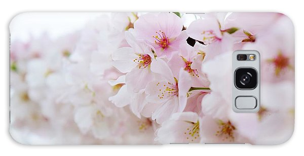 Cherry Blossom Focus Galaxy Case