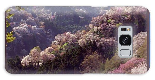 Cherry Blossom Season In Japan Galaxy Case