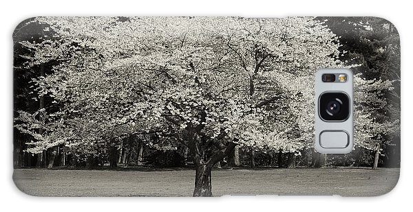 Cherry Blossom Tree - Ocean County Park Galaxy Case