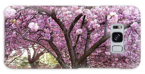Cherry Blossom Wonder Galaxy Case