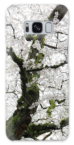 Cherry Blossoms 119 Galaxy Case
