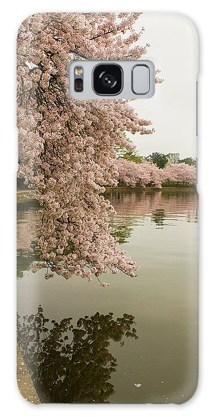 Cherry Blossoms Along The Tidal Basin 8x10 Galaxy Case