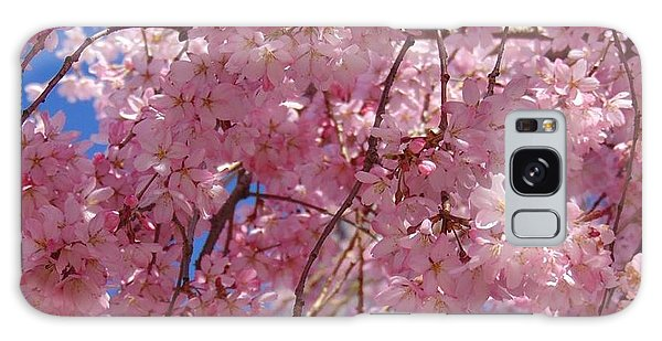Cherry Blossoms Galaxy Case by Charlotte Gray