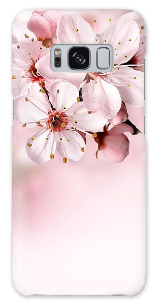 Cherry Blossoms In Bloom  Galaxy Case