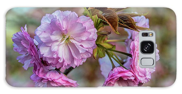 Cherry Blossoms Galaxy Case by Pat Cook