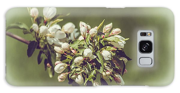 Cherry Blossoms Galaxy Case by Yeates Photography