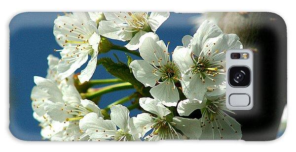 Cherry Tree Blossom Galaxy Case