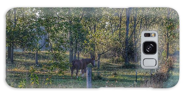 1009 - Chestnut Horse Among The Trees Galaxy Case