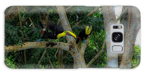 Chestnut-mandibled Toucans Galaxy Case