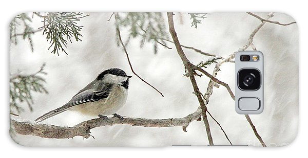 Chicadee In A Snow Storm  Galaxy Case