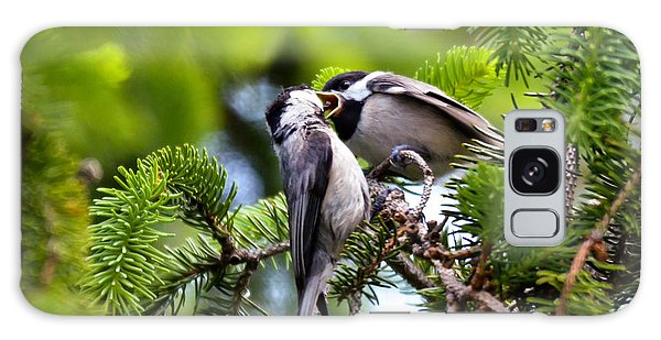 Chickadee Feeding Time Galaxy Case