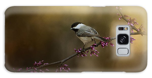 Chickadee In The Golden Light Galaxy Case