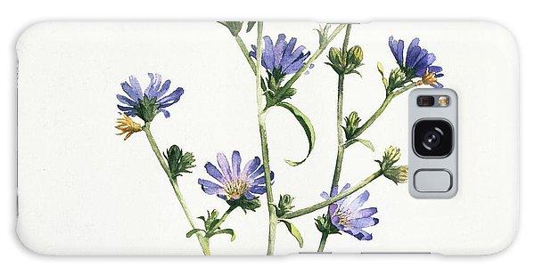 Chicory Galaxy Case