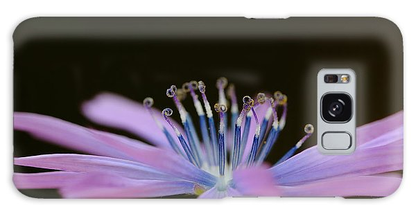 Chicory Galaxy Case