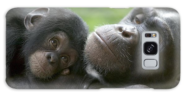 Nigeria Galaxy Case - Chimpanzee Mother And Infant by Cyril Ruoso