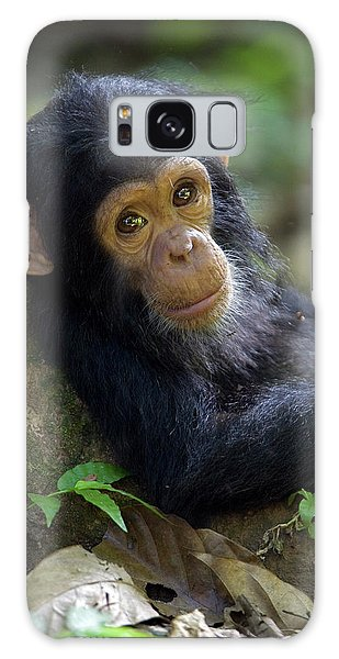 Galaxy Case featuring the photograph Chimpanzee Pan Troglodytes Baby Leaning by Ingo Arndt