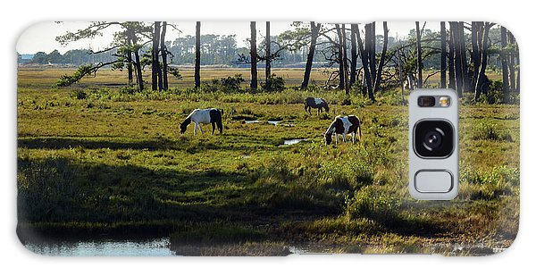 Chincoteague Ponies Galaxy Case