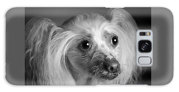 Chinese Crested - 04 Galaxy Case
