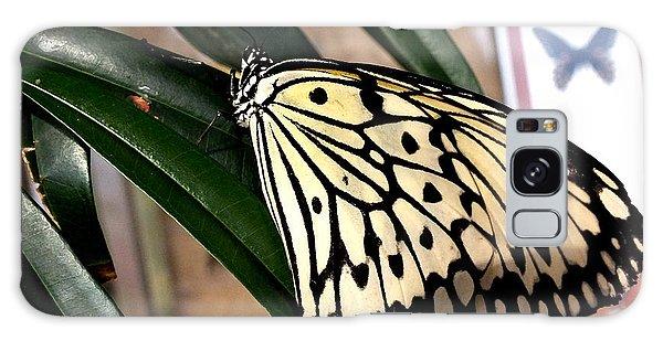 Chinese Yellow Swallowtail Galaxy Case