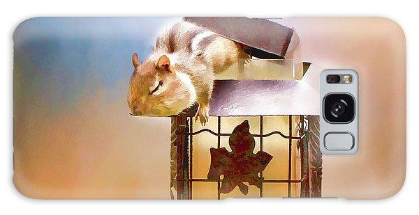 Chipmunk At The Feeder 3 Nursery Triptych  Galaxy Case