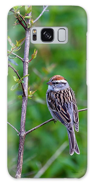 Chipping Sparrow Galaxy Case