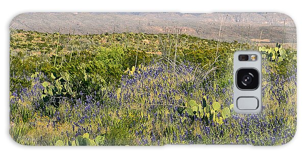 Chisos Mountains Galaxy Case