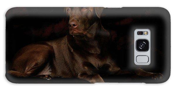 Chocolate Lab Dog Galaxy Case