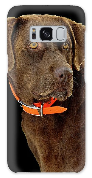 Chocolate Lab Galaxy Case