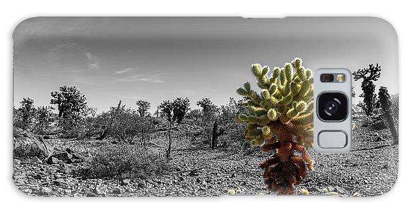 Cholla Cactus Galaxy Case