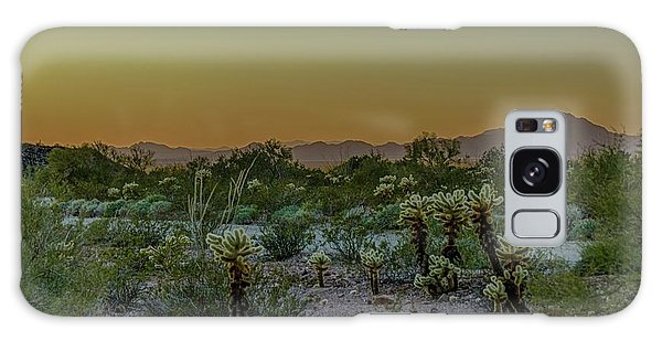 Cholla Desert Sunset Galaxy Case