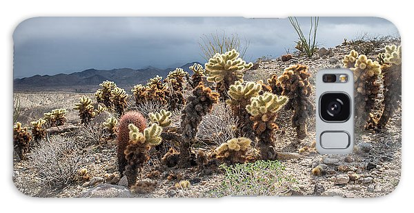 Cholla Family With Guests Galaxy Case