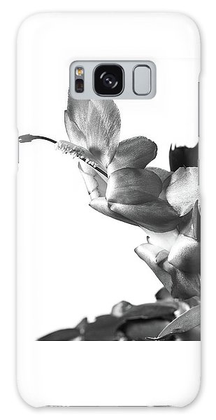 Christmas Cactus Galaxy Case by Ed Cilley