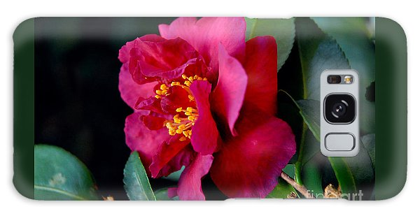 Christmas Camellia Galaxy Case by Marie Hicks
