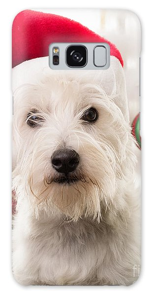 Elf Galaxy Case - Christmas Elf Dog by Edward Fielding