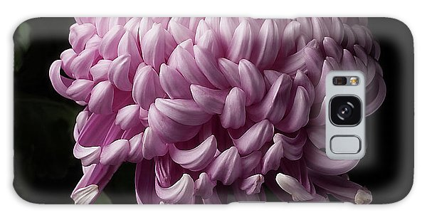 Chrysanthemum  Galaxy Case