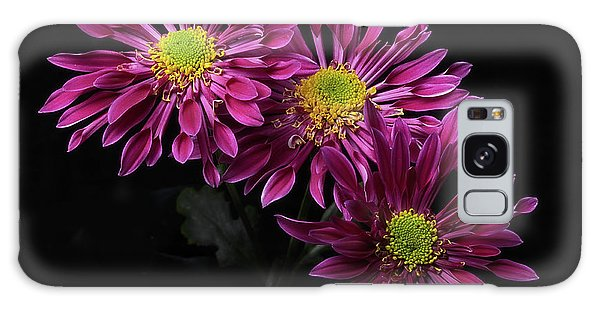 Chrysanthemum 'saba' Galaxy Case